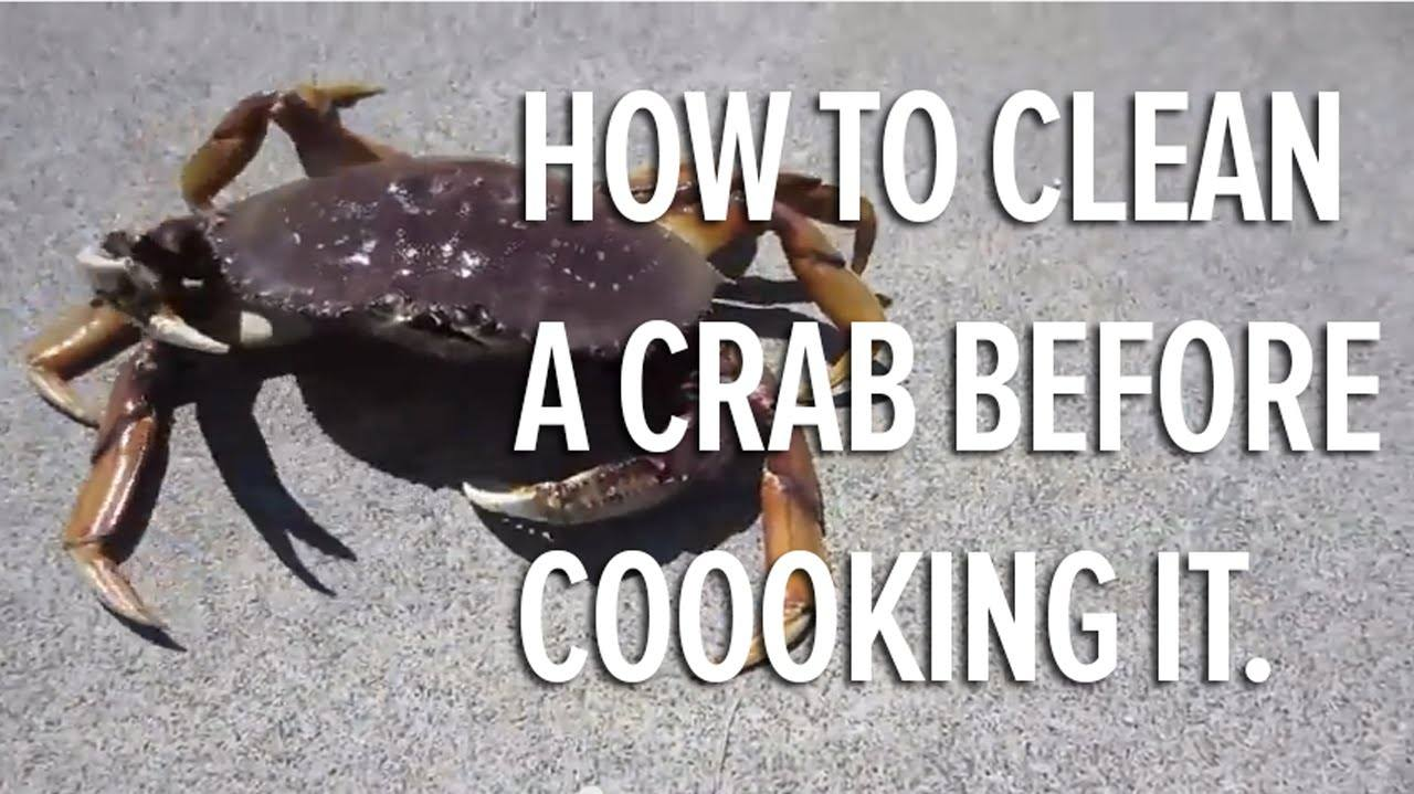 can pregnant women eat crab how to know if they can